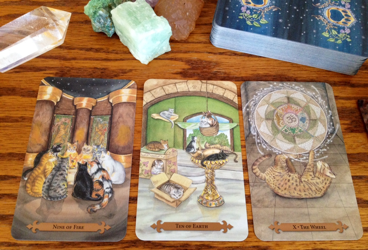 What is my tarot card reading