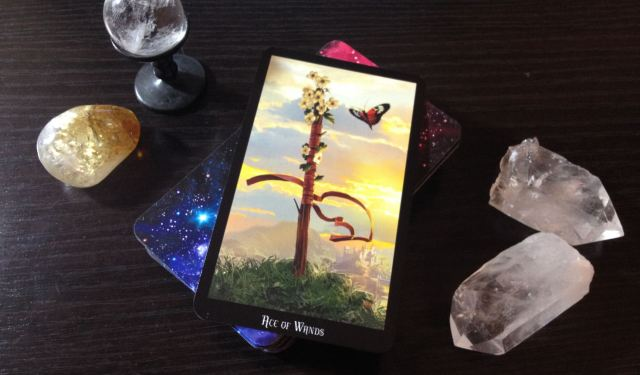 Witches Tarot Interview Q5