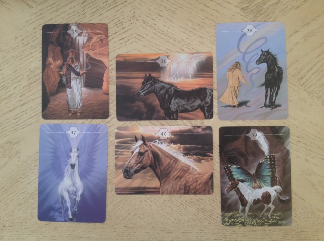 Way of the Horse 06 Card Views 4