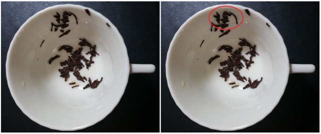 2015.08.09 Tabitha Dial Tea Leaf Reading 2 (Bat)