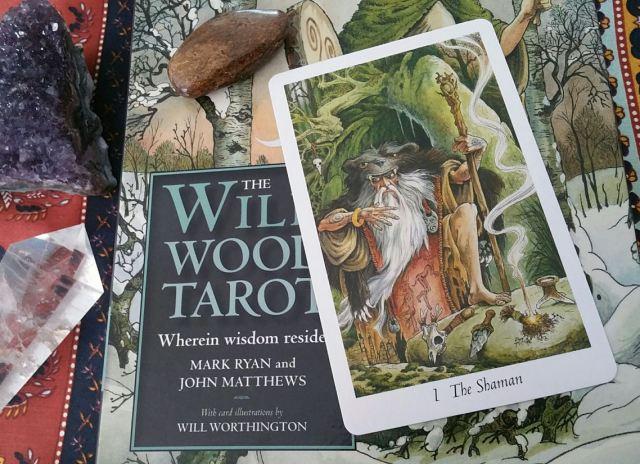 05 Willdwood Tarot Shaman Card