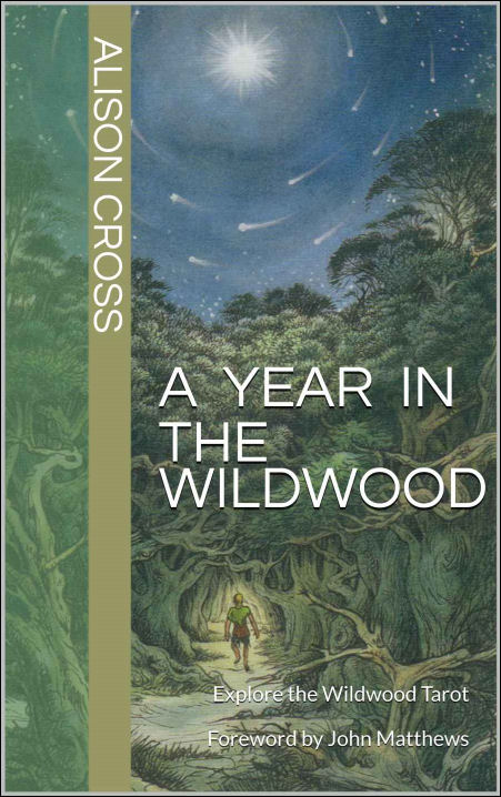 A Year in the Wildwood by Alison Cross (Book Cover Image)