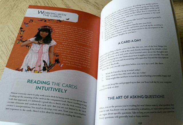 Gaian Tarot 13 Guidebook Work with Cards