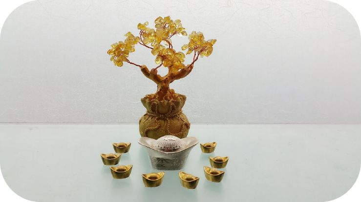san-francisco-bay-area-feng-shui-consultant-benebell-wen-02-money-tree-prosperity-bowl