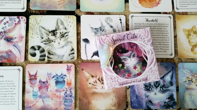 spirit-cats-oracle-deck-by-nicole-piar-04
