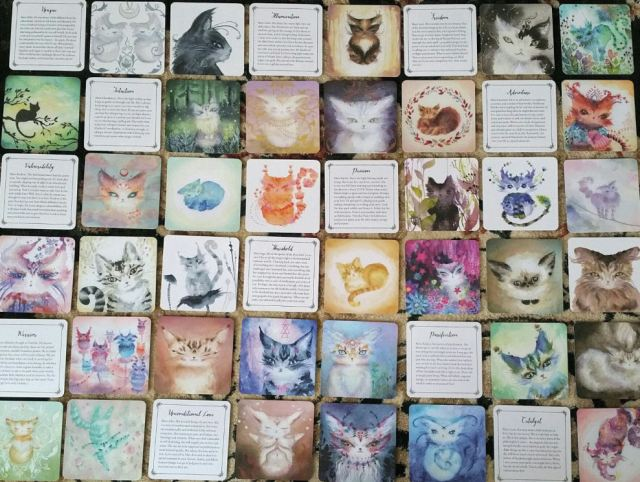 spirit-cats-oracle-deck-by-nicole-piar-13